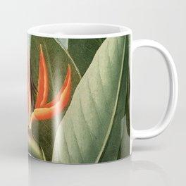 Birds of Paradise : Temple of Flora Coffee Mug