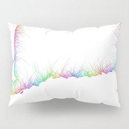 Rainbow Connecticut map Pillow Sham