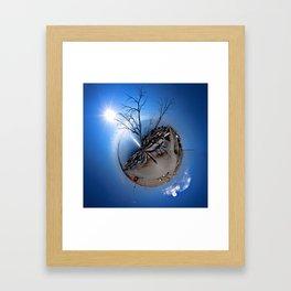 Polar Salton Sea Framed Art Print