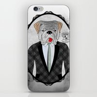 english bulldog iPhone & iPod Skins featuring Mr. Dandy - English Bulldog by Rozenblyum Couture