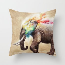 Colorful of Journey No.2 Throw Pillow