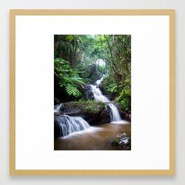 Hawaii Big Island Tropical Botanical Garden Framed Art Print