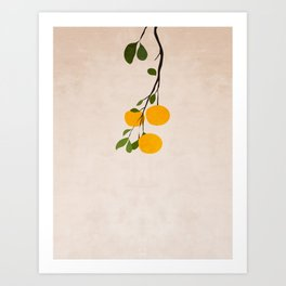 Branch of citrus Art Print
