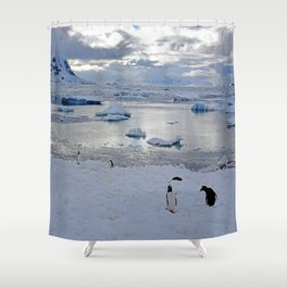 Gentoo Penguins on Ice Shower Curtain