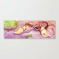 Coconut Crab Canvas Print