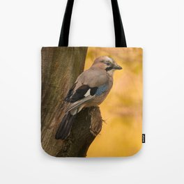 Jay bird in the park Tote Bag