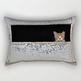 Mr. Holley's Cat Rectangular Pillow