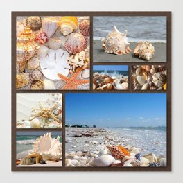 Seashell Treasures From The Sea Canvas Print