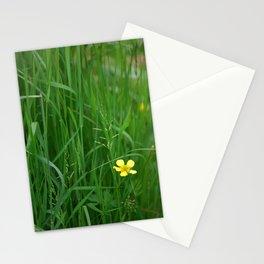 Flowers Izby Garden 5 Stationery Cards
