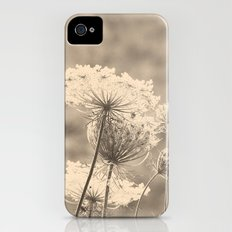 Lace in the Meadow iPhone (4, 4s) Slim Case