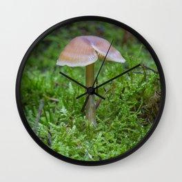 Tiny Fungi. Wall Clock