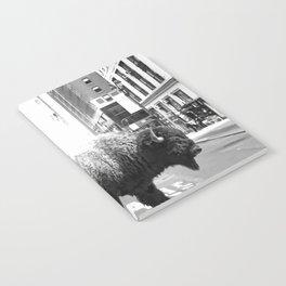 Street Walker Notebook
