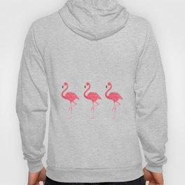 Flamingo tropical dance Hoody