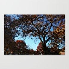 fallday Canvas Print