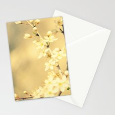 Remember... Stationery Cards