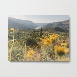 Desert Wildflower Superbloom Metal Print
