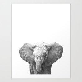 Black and White Baby Elephant Art Print