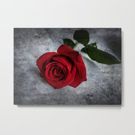 The red rose Metal Print