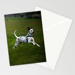 Flying Crazy Dog. Kokkie. Dalmatian Stationery Cards