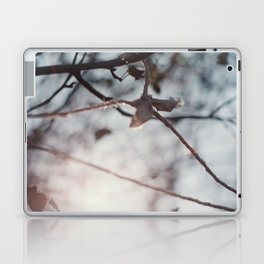 hanging Laptop & iPad Skin