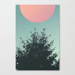 Pine tree and birds Canvas Print