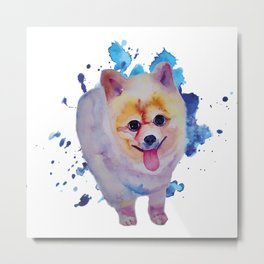 Happy Pomeranian Metal Print