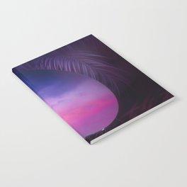 Introspect Notebook