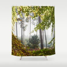 Pine trees viewed through autumnal Beech tree leaves. Norfolk, UK. Shower Curtain