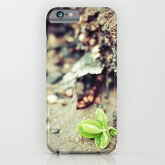 New beginning iPhone 6s Slim Case