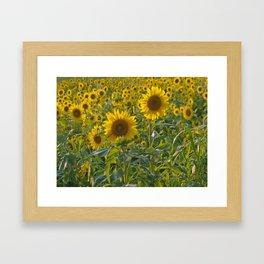 Simply Sunflowers Framed Art Print
