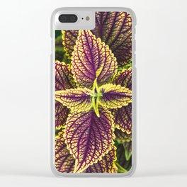 Plant Patterns - Coleus Colors Clear iPhone Case