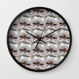 Muggles, the Sassy Cat with Cattitude! Wall Clock