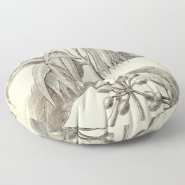 Cananga odorata Floor Pillow
