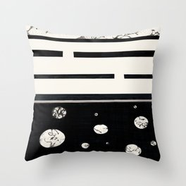 DK-147 (2010) Throw Pillow