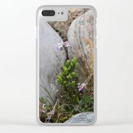Shot in Rocks Clear iPhone Case