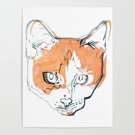 Kitten with a Soul Patch Poster