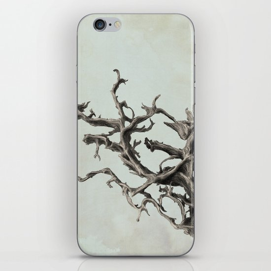 Spirits of the Driftwood iPhone & iPod Skin
