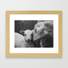 Mama Cuddles Framed Art Print