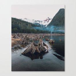 A Stumpy Morning - British Columbia, Canada Canvas Print