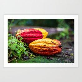 Cocoa Colours Art Print