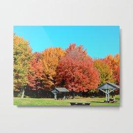 Autumn Picnic in Canada Metal Print
