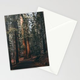 Walking Sequoia Stationery Cards