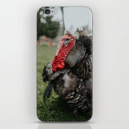 Larry iPhone Skin