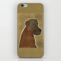 lab iPhone & iPod Skins featuring chocolate lab by bri.buckley