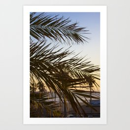 Summer Feels with Palms Art Print