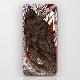 A Raven In Winter iPhone Skin