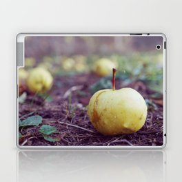 Fallen Apples Laptop & iPad Skin