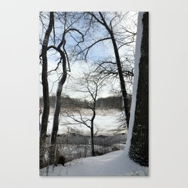View in the woods Canvas Print