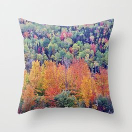 Paint By Nature - Fall Foliage Throw Pillow