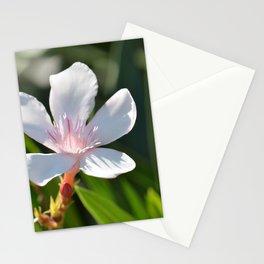 Oleander 134 Stationery Cards